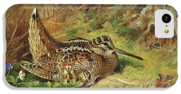 Woodcock iPhone 5c Case - A Woodcock And Chicks by Archibald Thorburn