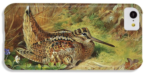 A Woodcock And Chicks IPhone 5c Case by Archibald Thorburn