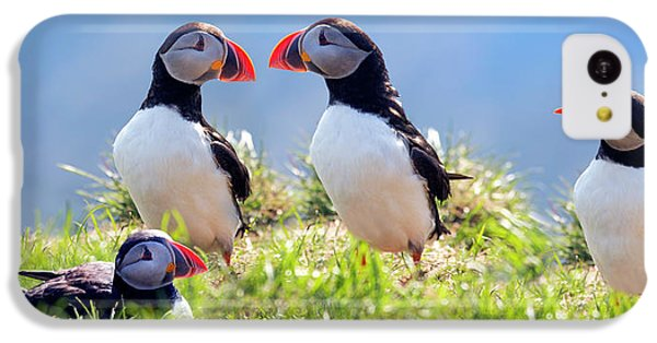 A World Of Puffins IPhone 5c Case
