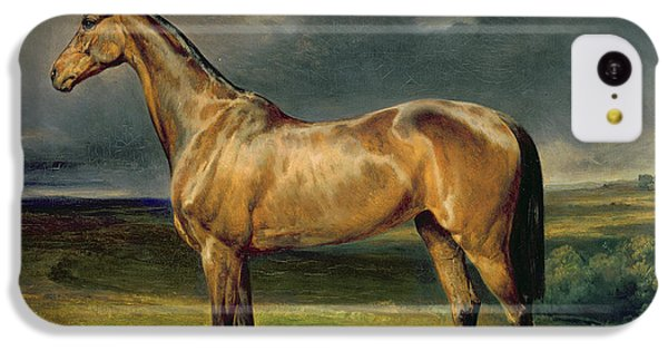 Horse iPhone 5c Case - Abdul Medschid The Chestnut Arab Horse by Carl Constantin Steffeck