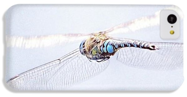 iPhone 5c Case - Aeshna Juncea - Common Hawker In by John Edwards