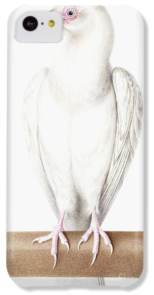 Albino Crow IPhone 5c Case by Nicolas Robert
