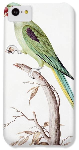 Parakeet iPhone 5c Case - Alexandrine Parakeet by Nicolas Robert