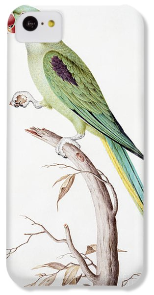 Alexandrine Parakeet IPhone 5c Case by Nicolas Robert