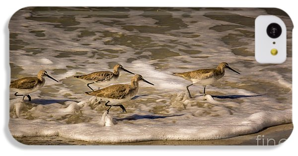 Sandpiper iPhone 5c Case - All Together Now by Marvin Spates
