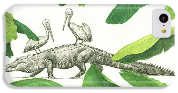 Pelican iPhone 5c Case - Alligator With Pelicans by Juan Bosco