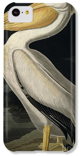 Pelican iPhone 5c Case - American White Pelican by John James Audubon
