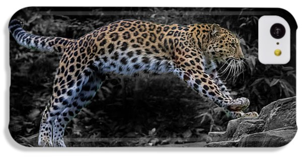Amur Leopard On The Hunt IPhone 5c Case by Martin Newman