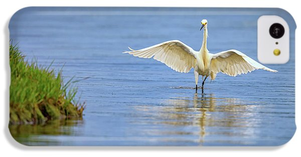 An Egret Spreads Its Wings IPhone 5c Case