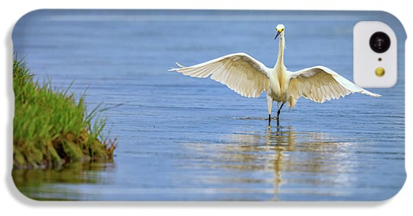 An Egret Spreads Its Wings IPhone 5c Case by Rick Berk