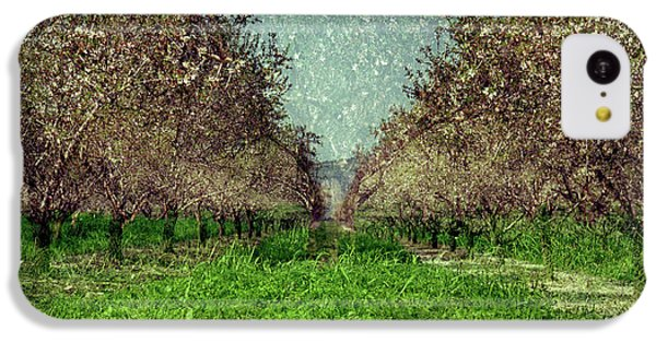 An Orchard In Blossom In The Eila Valley IPhone 5c Case