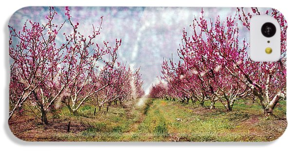 An Orchard In Blossom In The Golan Heights IPhone 5c Case