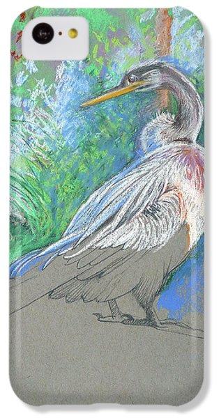 Anhinga iPhone 5c Case - Anhinga Sarasota Plein Air by Catherine Twomey