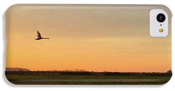 Sky iPhone 5c Case - Another Iphone Shot Of The Swan Flying by John Edwards