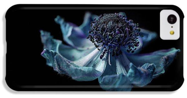 Ant iPhone 5c Case - Ant Explorer by Garry Solomon