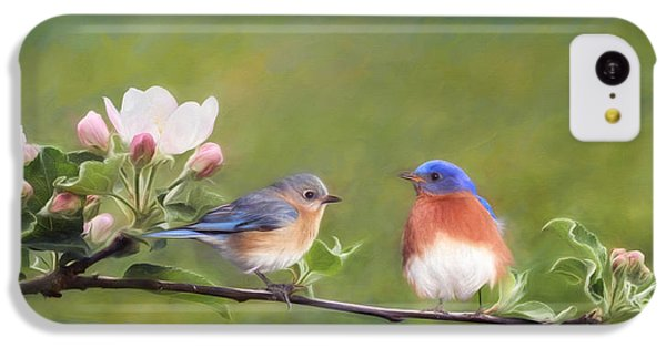 Apple Blossoms And Bluebirds IPhone 5c Case