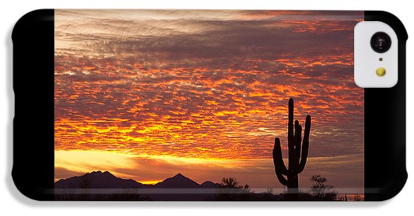 Arizona November Sunrise With Saguaro   IPhone 5c Case