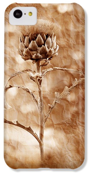 Artichoke Bloom IPhone 5c Case by La Rae  Roberts