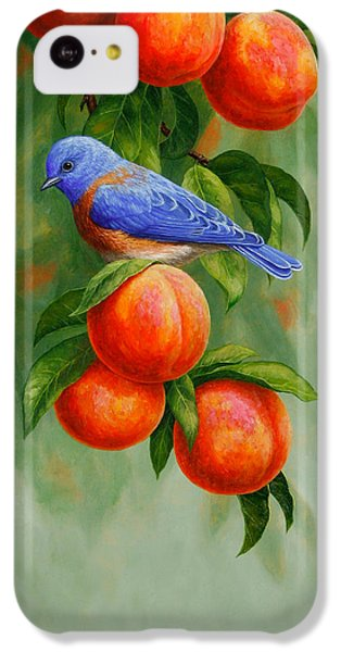 Bluebird And Peaches Greeting Card 2 IPhone 5c Case by Crista Forest