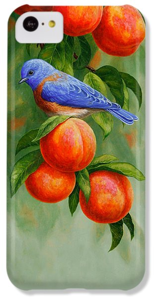Bluebird And Peaches Greeting Card 2 IPhone 5c Case