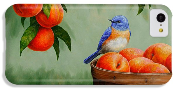 Bluebird And Peaches Greeting Card 3 IPhone 5c Case by Crista Forest