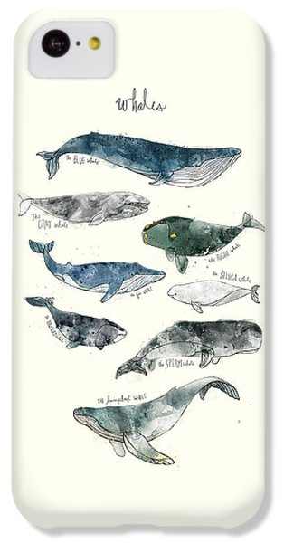 Whales IPhone 5c Case by Amy Hamilton