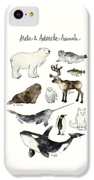 Arctic And Antarctic Animals IPhone 5c Case by Amy Hamilton
