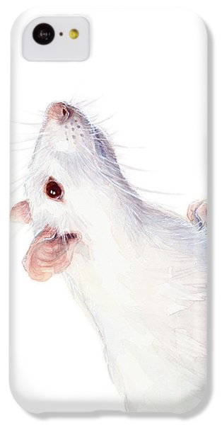 Mouse iPhone 5c Case - White Albino Rat Watercolor by Olga Shvartsur
