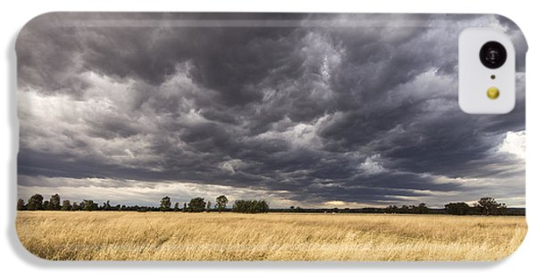 The Calm Before The Storm IPhone 5c Case by Linda Lees