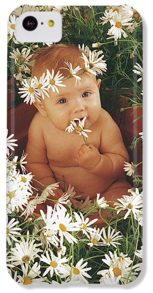 Daisies IPhone 5c Case by Anne Geddes