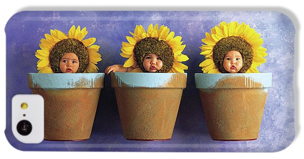 Sunflower iPhone 5c Case - Sunflower Pots by Anne Geddes