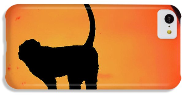 As The Day Ends IPhone 5c Case