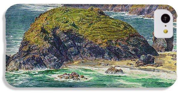 Asparagus Island IPhone 5c Case by William Holman Hunt