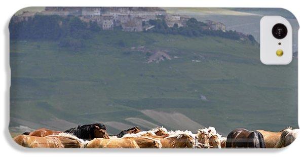 Castelluccio Di Norcia, Parko Nazionale Dei Monti Sibillini, Italy IPhone 5c Case