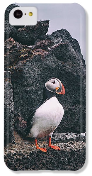 Atlantic Puffin IPhone 5c Case