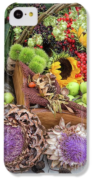 Autumn Abundance IPhone 5c Case by Tim Gainey