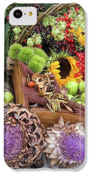 Autumn Abundance IPhone 5c Case by Tim Gainey
