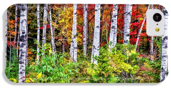 IPhone 5c Case featuring the painting Autumn Birches by Christopher Arndt