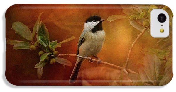 Autumn Day Chickadee Bird Art IPhone 5c Case by Jai Johnson