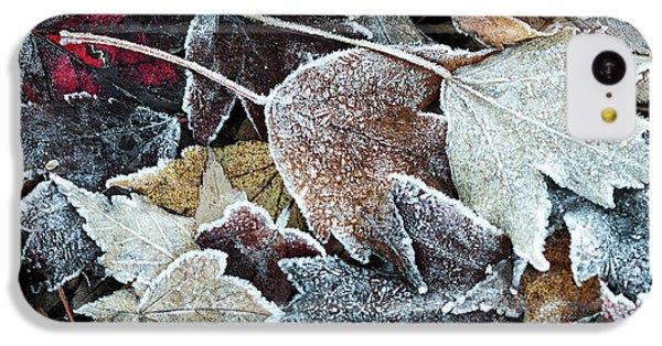 Autumn Ends, Winter Begins 1 IPhone 5c Case