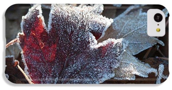 Autumn Ends, Winter Begins 2 IPhone 5c Case