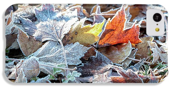 Autumn Ends, Winter Begins 3 IPhone 5c Case
