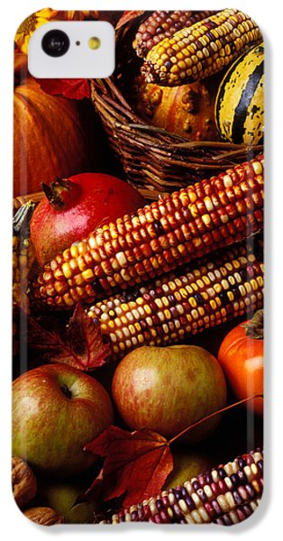 Autumn Harvest  IPhone 5c Case