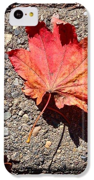 Orange iPhone 5c Case - Autumn Is Here by Blenda Studio