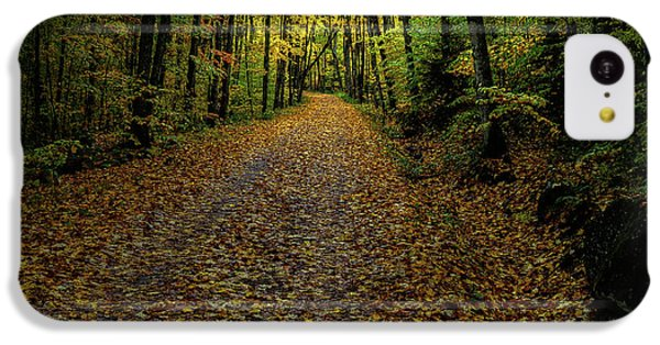 IPhone 5c Case featuring the photograph Autumn Leaves On The Trail by David Patterson