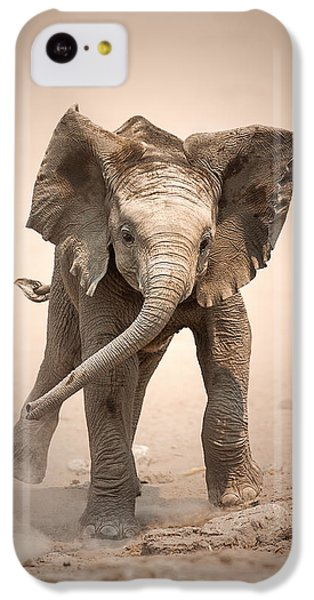 Cow iPhone 5c Case - Baby Elephant Mock Charging by Johan Swanepoel