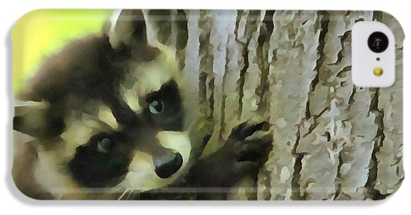 Baby Raccoon In A Tree IPhone 5c Case