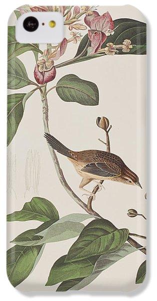 Bachmans Sparrow IPhone 5c Case by John James Audubon