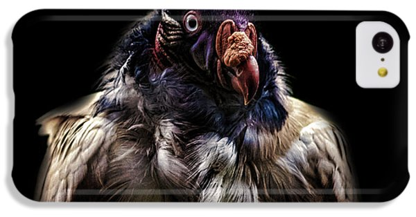 Griffon iPhone 5c Case - Bad Birdy by Martin Newman