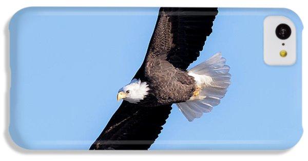 Bald Eagle Overhead  IPhone 5c Case